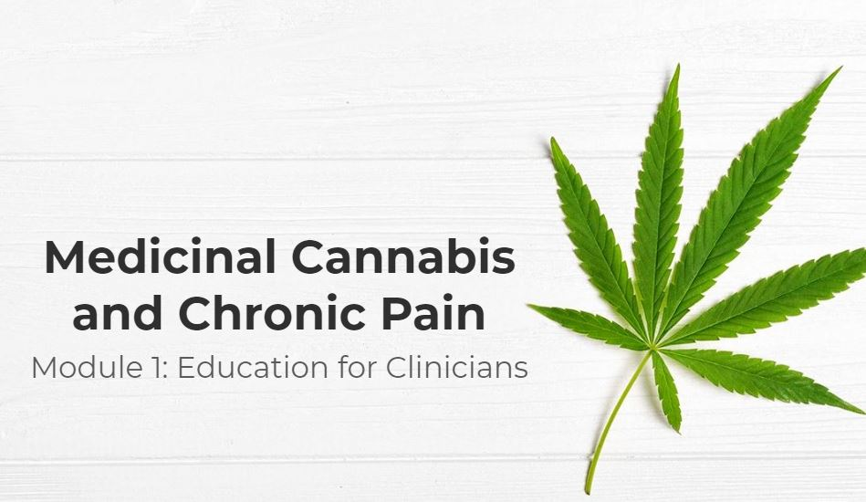 Medicinal Cannabis and Chronic Pain title slide